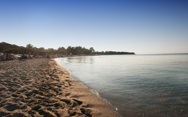 Golden beach with fine sand in Pefkochori - Halkidiki