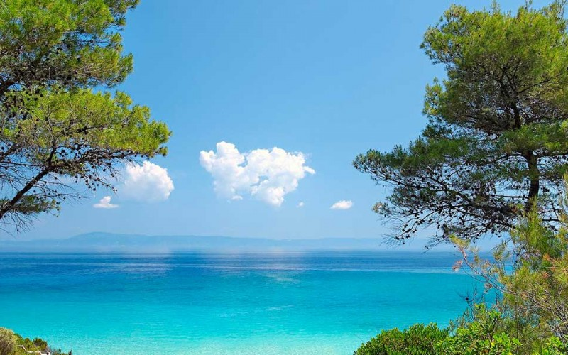 Halkidiki combines lust green nature & crystal clear sea