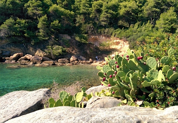 Secluded cove Paliouri Halkidiki